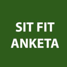 Blog 035: Poročilo Sit Fit ankete 2016