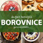 Blog 039: Borovnice