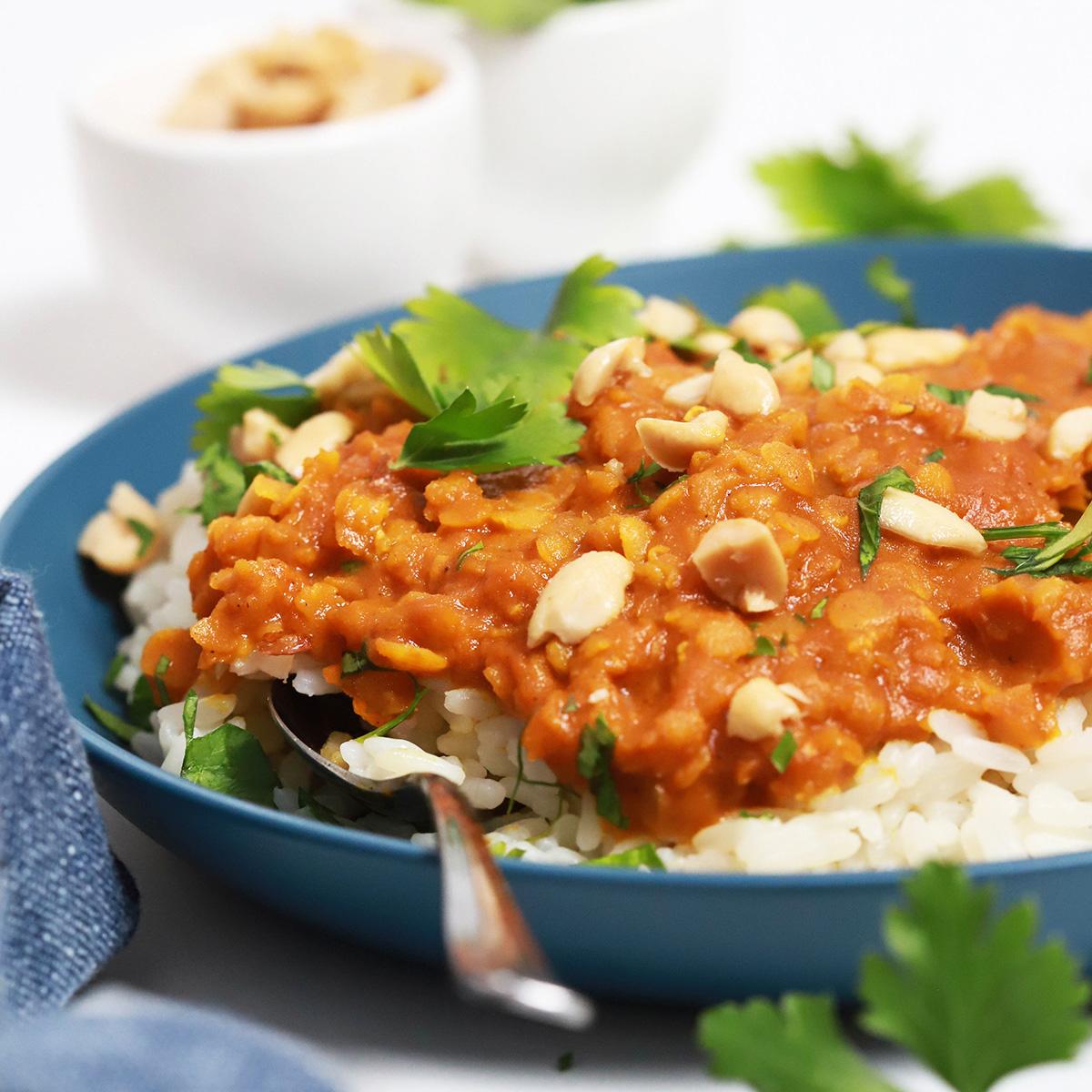 Curry z rdečo lečo na belem rižu