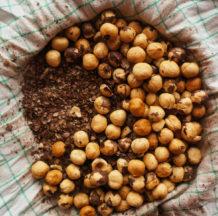 Blog 021: Praženje (in lupljenje) lešnikov - foto po korakih