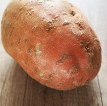 VSE o sladkem krompirju